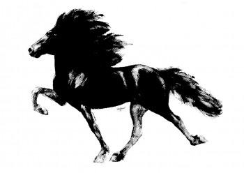 Auto Aufkleber Pferdemotiv