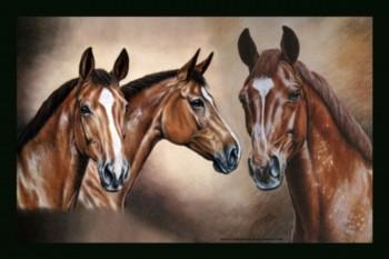 Geschenke rund ums Pferd
