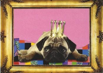 Postkartenset Edition Mopsfidele Grüsse mit 10 Postkarten für alle Gelegenheiten