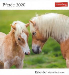 Pferde Wochenkalender mit 53 Postkarten von Christiane Slawik - Pferde 2020