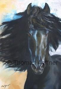 "Klappkarte Thomas Aeffner ""Black Beauty"" incl. Umschlag"