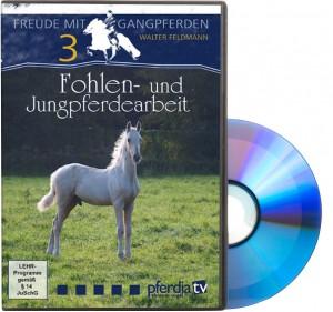 DVD Freude mit Gangpferden Teil 3: Fohlen- und Jungpferdearbeit