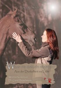 Sandra Schneider - Wenn ihr endlich versteht: Aus der Dunkelheit ins Licht