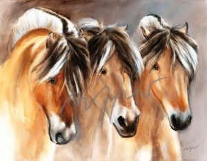 Leinwanddruck Thomas Aeffner: 3 Fjordpferde 80 x 100 cm