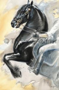 Kunstdruck Thomas Aeffner:  Levade