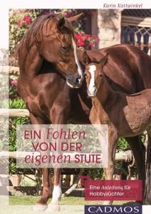 Karin Kattwinkel - Ein Fohlen von der eigenen Stute