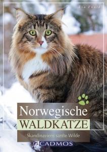 Eva Ewald - Norwegische Waldkatze - Remittendenexemplar