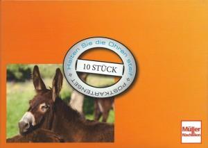 Postkartenset Edition Esel mit 10 Postkarten für alle Gelegenheiten