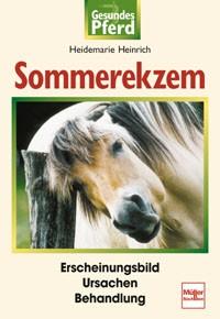 Gesundes Pferd - Sommerekzem