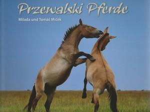 Milada und Tomás Micek - Przewalski Pferde