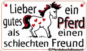 Kunststoff-Schild: Lieber ein gutes Pferd ...