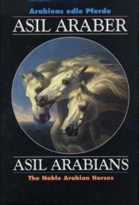 Asil Araber V - Asil Arabians