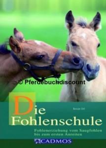 Renate Ettl: Die Fohlenschule - Fohlenerziehung