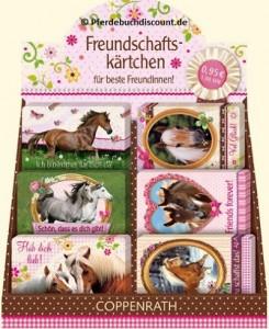 Display mit 60 Freundschaftskärtchen Pferdemotiv