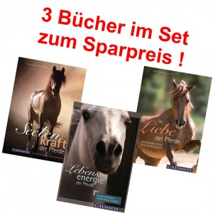 3 Titel der Autorin Nanda van Gestel van der Schel - Sonderpreis !