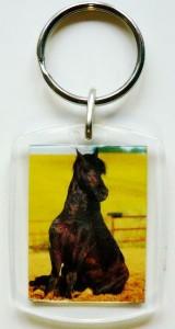 Plexiglas Schlüsselanhänger mit Pferdemotiv 07