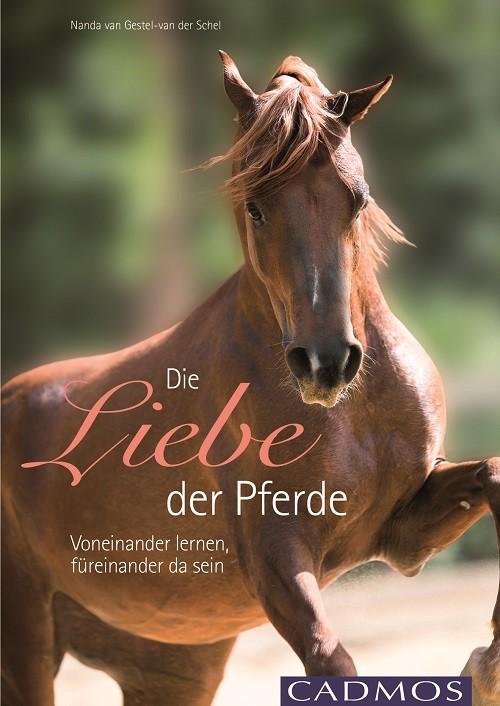 Nanda van Gestel van der Schel - Die Liebe der Pferde