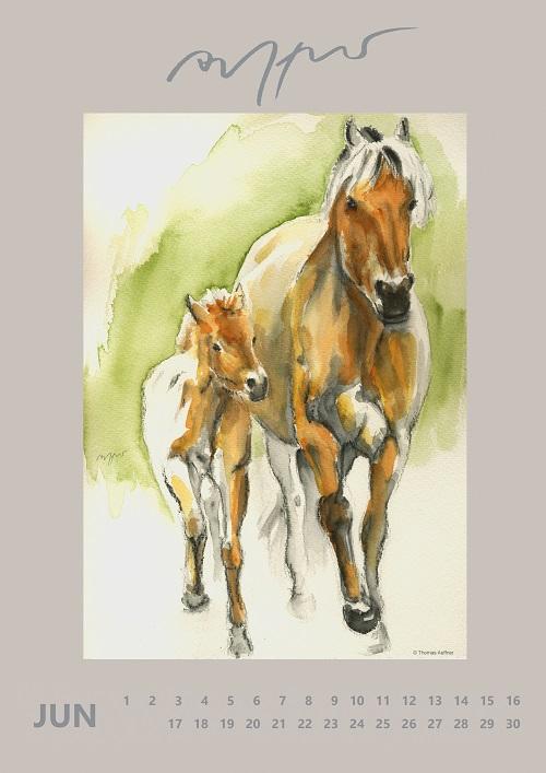 Pferde Geburtstags Kalender Immerwährendes Kalendarium Thomas Aeffner NEU