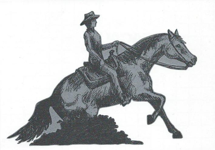 Konturgestanzter Auto Aufkleber Motiv Western I Silber